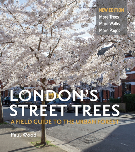 London's Street Trees – A Walk with Paul Wood