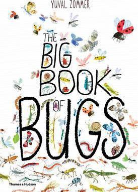Yuval Zommer | The Big Book of Bugs | 9780500650677 | Daunt Books