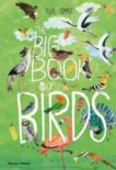 Yuval Zommer | The Big Book of Birds | 9780500651513 | Daunt Books
