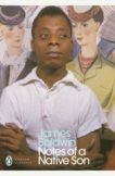 James Baldwin | Notes of a Native Son | 9780241334003 | Daunt Books