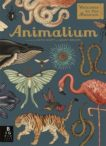 Jenny Broom and Kate Scott | Animalium | 9781787411647 | Daunt Books