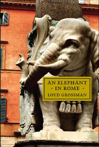 The Elephant In Rome