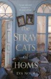 Eva Nour   The Stray Cats of Homs   9780857526755   Daunt Books