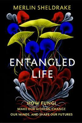 Merlin Sheldrake | Entangled Life | 9781847925190 | Daunt Books