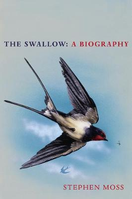 The Swallow: A Biography