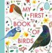 Zoe Ingram   My First Book of Birds   9781406394184   Daunt Books