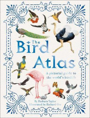 Barbara Taylor | The Bird Atlas: A pictoral guide to the world's birdlife | 9780241412794 | Daunt Books