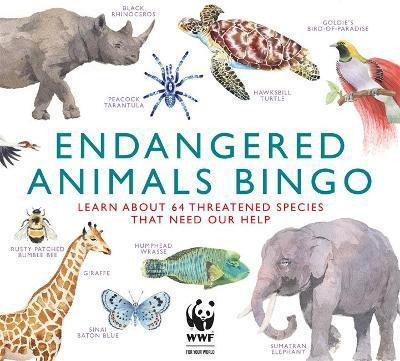 Marcel George   Endangered Animals Bingo   9781913947798   Daunt Books